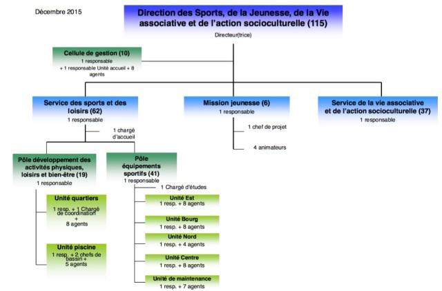 Organigramme DSAVA - copie